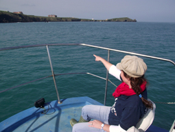 The Bounty, Newquay Sea Safaris.